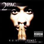 альбом R U Still Down